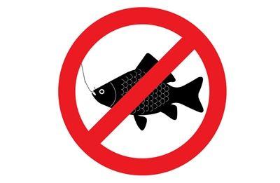 В Николаевской области ввели ограничения на вылов рыбы (Список участков)