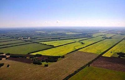 В Новоодесском районе фермер самовольно захватил и обрабатывал 100 га земли