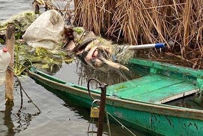 В Новоодесском районе спасатели ищут двух пропавших рыбаков