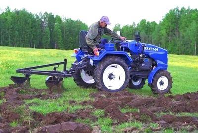 Громадяни, які самостійно обробляли у минулому році земельні ділянки площею понад 2 га, та реалізовували вирощену сільськогосподарську продукцію мають задекларувати доходи