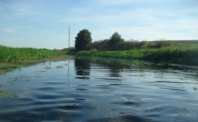 Как земельная реформа поможет защитить водоемы и заповедные территории в Николаевской области