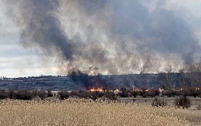 В Гурьевке неизвестные подпалили камыш